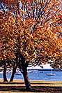 /images/133/1998-08-toronto-lake-view1.jpg - #00143: fall in Toronto … August 1998 -- Toronto, Ontario.Canada