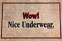 /images/133/1999-08-nice-underwear.jpg - #00357: doormat at Christina`s in Phoenix … August 1999 -- Phoenix, Arizona