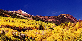 /images/133/1999-09-snowmass-yellow-pano.jpg - #00443: Fall colors in Snowmass Village  … Sept 1999 -- Snowmass Village, Colorado
