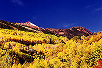 /images/133/1999-09-snowmass-yellow.jpg - #00433: Fall colors in Snowmass Village  … Sept 1999 -- Snowmass Village, Colorado