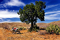 /images/133/2000-04-xr-tangerine2.jpg - #00486: my Honda XR400 … parked on a hill (kickstarter broke) … April 2000 -- Tucson, Arizona