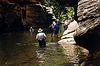 /images/133/2000-05-sedona-canyon-water.jpg - #00497: hiking club wading in Wet Beaver Creek … May 2000 -- Sedona, Arizona
