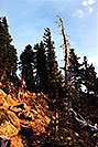 /images/133/2000-07-humphreys-woods-v.jpg - #00513: hiking from Snowbowl to Humphreys Peak … July 2000 -- Humphreys Peak, Snowbowl, Arizona