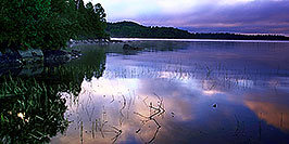 /images/133/2000-09-tema-island-morning2-w.jpg - #00682: morning at Lake Temagami … Sept 2000 -- Lake Temagami, Temagami, Ontario.Canada