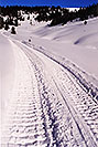 /images/133/2001-01-07-snowcat-tracks-v.jpg - #00739: morning at 11,500ft … Jan 2001 -- Leadville, Colorado