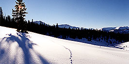 /images/133/2001-01-leadville-sun-morning-pano.jpg - #00751: Morning at 11,500ft … Jan 2001 -- Chalk Mountain, Leadville, Colorado