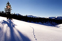 /images/133/2001-01-leadville-sun-morning.jpg - 00762: Morning at 11,500ft … Jan 2001 -- Chalk Mountain, Leadville, Colorado