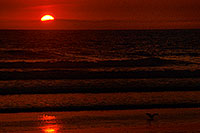 /images/133/2001-03-cali-orange-bird-su.jpg - #00776: Sunset at Huntington Beach … March 2001 -- Huntington Beach, California