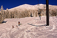/images/133/2001-03-snowbowl-dogs.jpg - #00772: Big snow at Snowbowl … Humphreys Peak in the background … March 2001 -- Humphreys Peak, Snowbowl, Arizona