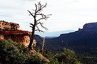 /images/133/2001-08-sedona-long-can1.jpg - #00878: Long Canyon … August 2001 -- Sedona, Arizona