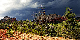 /images/133/2001-08-sedona-long-can3-2.jpg - #00890: Long Canyon … August 2001 -- Sedona, Arizona