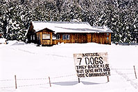 /images/133/2002-03-flagstaff-7dogs-snow.jpg - #00935: 7 dogs … near Flagstaff … March 2002 -- Flagstaff, Arizona