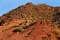 /images/133/2003-03-camelback-trail4.jpg - #01142: trail up Camelback Mountain … March 2003 -- Camelback Mountain, Phoenix, Arizona