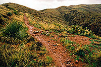 /images/133/2003-03-reavis-rain5.jpg - #01177: wet Reavis Ranch Trail in Superstition Mountains … March 2003 -- Superstitions, Arizona