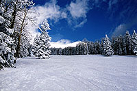 /images/133/2003-03-snowbowl-blue-white.jpg - #01170: Snowbowl ski area … March 2003 -- Snowbowl, Arizona