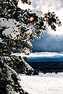 /images/133/2003-03-snowbowl-down1-vert.jpg - #01191: Snowbowl ski area … March 2003 -- Snowbowl, Arizona