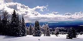 /images/133/2003-03-snowbowl-down3-pano.jpg - #01194: Snowbowl ski area … March 2003 -- Snowbowl, Arizona