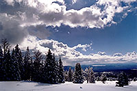 /images/133/2003-03-snowbowl-down3.jpg - #01193: Snowbowl ski area … March 2003 -- Snowbowl, Arizona