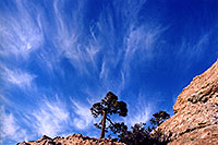 /images/133/2003-03-tucson-inspir-rock1.jpg - #01192: Inspiration Rock, St. Catalina Mountains … March 2003 -- St Catalina Mountains, Tucson, Arizona