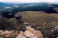 /images/133/2004-06-mtevans-goat-view.jpg - #01556: Mountain Goat with Echo Lake on far left … June 2004 -- Mt Evans, Colorado