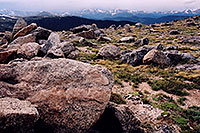 /images/133/2004-06-mtevans-rocks-view1.jpg - #01585: rocky meadows of Mt Evans … June 2004 -- Mt Evans, Colorado