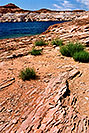 /images/133/2004-07-powell2-waheep2-v.jpg - #01775: images of Wahweap and Lake Powell … July 2004 -- Wahweap, Lake Powell, Utah