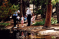 /images/133/2004-07-rocky-people-woods.jpg - #01801: ducks at Sprague Lake … July 2004 -- Sprague Lake, Rocky Mountain National Park, Colorado