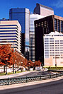 /images/133/2004-08-denver-park-side-view.jpg - #01888: Buildings in Denver … August 2004 -- Denver, Colorado