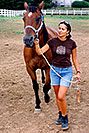 /images/133/2004-08-horses-ola-walking.jpg - #01914: Ola in Greenwood Village … August 2004 -- Greenwood Village, Colorado