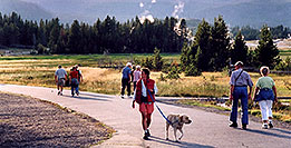 /images/133/2004-08-yello-faith-dog.jpg - #02079: Old Faithful to the right, other geysers in the background … August 2004 -- Old Faithful Geyser, Yellowstone, Wyoming