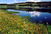 /images/133/2004-08-yello-indian-pond1.jpg - #02077: Indian Pond by Yellowstone Lake … August 2004 -- Indian Pond, Yellowstone, Wyoming