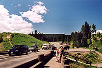 /images/133/2004-08-yello-tourists1.jpg - #02115: Buffalo herd after crossing Fishing Bridge … August 2004 -- Yellowstone, Wyoming