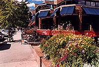 /images/133/2004-09-aspen-flowers.jpg - #02111: Flowers and people in Aspen … Sept 2004 -- Aspen, Colorado