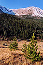 /images/133/2004-09-indep-tree-mtn-vert.jpg - #02160: ghost town of Independence … Sept 2004 -- Independence Pass, Colorado