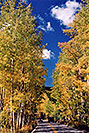 /images/133/2004-09-indep-yellow-road1.jpg - #02162: road from Aspen to Independence Pass … Sept 2004 -- Independence Pass, Colorado
