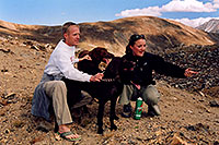 /images/133/2004-09-loveland-dogs5.jpg - #02152: Labrador Retrievers at Loveland Pass … Sept 2004 -- Loveland Pass, Colorado
