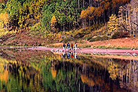 /images/133/2004-09-maroon-people2.jpg - #02225: Maroon Lake with fall colors … Sept 2004 -- Maroon Lake, Maroon Bells, Colorado