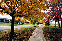 /images/133/2004-10-cent-trees01.jpg - #02246: images of Centennial … Oct 2004 -- Centennial, Colorado