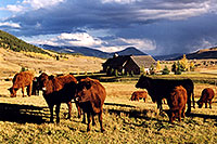 /images/133/2004-10-crested-evening3.jpg - #02313: evening in Crested Butte, looking south … Oct 2004 -- Crested Butte, Colorado