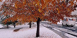 /images/133/2004-11-centennial-snow2-pano.jpg - #02397: Fedex on delivery … when fall turns to winter in Denver suburbs … Nov 2004 -- Centennial, Colorado