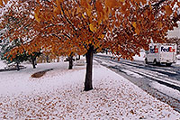/images/133/2004-11-centennial-snow2.jpg - #02396: Fedex on delivery … when fall turns to winter in Denver suburbs … Nov 2004 -- Centennial, Colorado