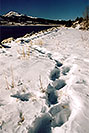 /images/133/2005-01-twin-lakes-lake3-2.jpg - #02451: Mt Elbert Forebay, elevation 9,645 ft … Jan 2005 -- Mt Elbert Forebay, Twin Lakes, Colorado