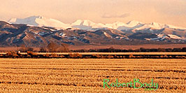 /images/133/2005-03-blanca-mountains-east-pano.jpg - #02446: Mountains in the east … March 2005 -- Blanca, Colorado