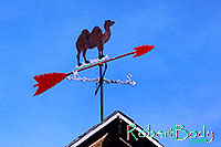 /images/133/2005-03-durango-camel-roof.jpg - #02491: camel windmeter and compass … images of Durango … March 2005 -- Durango, Colorado
