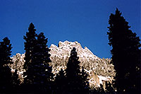 /images/133/2005-03-ouray-morn-trees.jpg - #02561: morning in Ouray … March 2005 -- Ouray, Colorado