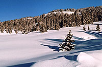 /images/133/2005-03-wolfcreek-top1.jpg - #02563: March at Wolf Creek Pass … March 2005 -- Wolf Creek Pass, Colorado