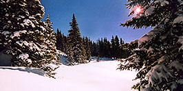 /images/133/2005-03-wolfcreek-trees1-pa.jpg - #02605: Morning sun peeking while walking knee-deep snow … March 2005 -- Wolf Creek Pass, Colorado