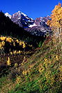 /images/133/2005-09-maroon-meadow-vert1.jpg - #02664: images of Maroon Bells … Sept 2005 -- Maroon Bells, Colorado