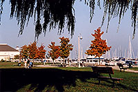 /images/133/2005-10-oakville-harbor5.jpg - #02663: images of Oakville harbour in Ontario … Oct 2005 -- Oakville, Ontario.Canada