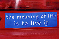 /images/133/2006-02-divide-meaning-sign.jpg - #02732: The meaning of Life is to Live it … images of Divide … Feb 2006 -- Divide, Colorado